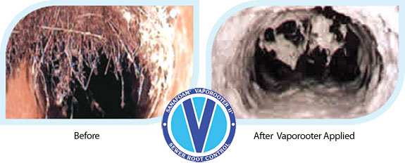 Before and after Sanafoam Vaporooter