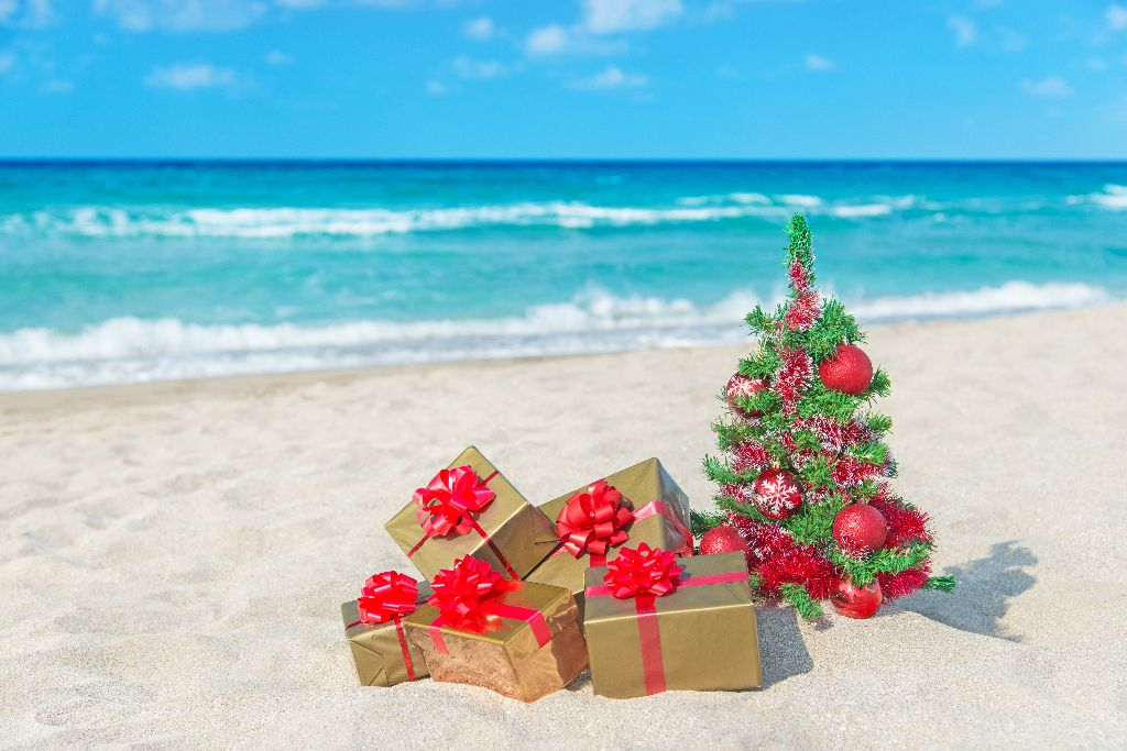 Christmas Holidays Images.Shutting Down Your Hot Water Unit Ready For A Holiday
